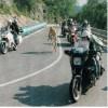 Laceno e il Giro: la tappa del 22 Maggio 1998