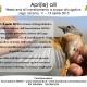Lago Laceno - Week end di inanellamento uccelli a scopo divulgativo