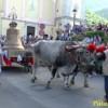 Montella festeggia il ritorno della Campana del Santuario del SS. Salvatore