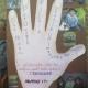 Bagnoli, Arciuolo: «Ecco le iniziative benefiche del nostro Istituto Comprensivo»