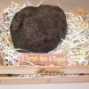 A Francesco De Sanctis piaceva il tartufo nero di Bagnoli