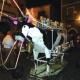 Bagnoli, la Vacca di Fuoco in onda su internet per la comunità estera