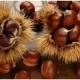 La castagna di Montella, ingrediente base per alimenti senza glutine