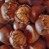 Castagne del prete: tradizione e leggenda di un prodotto tipico d'Irpinia
