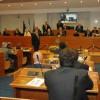 Ripopolamento cinghiali: audit alla Regione Campania