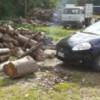 Laceno, danneggiamento boschivo e furto di legna: tre denunce