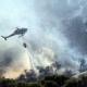 Emergenza incendi: revocato il divieto di bruciatura nei castagneti