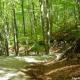 """Escursionismo – Il 12 maggio a Laceno """"Colle del Leone–Valle d'Acera"""""""