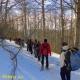Laceno Inverno 2017/2018: Trekking e ciaspolate