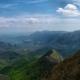 Il Larice e l'Abete bianco: scoperte naturalistiche nel comprensorio dei Monti Picentini