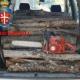 Bagnoli – Denunciato un giovane per furto di legna