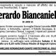 Gerardo Biancaniello (Pollena Trocchia – NA)