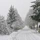 Tre metri di neve al Laceno, record per il Sud Italia