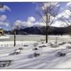 Il Laceno brinda alla neve. E Chieffo sfida le Dolomiti