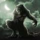 Dalle janare ai lupi mannari: mistero e paura nella tradizione irpina