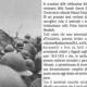 Bagnoli e la Grande Guerra - Memorie di famiglia