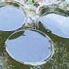 Petrolio in Irpinia - Crepe nel 'fronte del no', Ofanto contro Picentini
