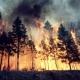 Rischio incendio: divieto combustione dei residui vegetali agricoli