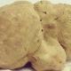 In Umbria un Tartufo bianco da 1,9 chili entra nel Guinness dei Primati