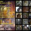 Bagnoli, dal 10 luglio visite guidate al patrimonio storico del paese
