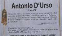 Antonio D'Urso (Niles Ohio – USA)