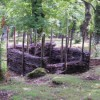 Compost nei castagneti & Norme per la raccolta dei funghi