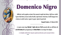 Domenico Nigro