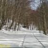 Laceno, auto di turisti prigioniera nella neve