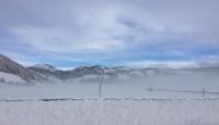 Riprende a nevicare sul Laceno: caduti 50 cm finora