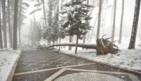 Neve nei comuni in alta collina. Laceno, si scia di nuovo