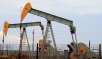 """Dall'esperienza lucana al comitato """"No Petrolio Alta Irpinia"""": Oro nero o morte nera?"""