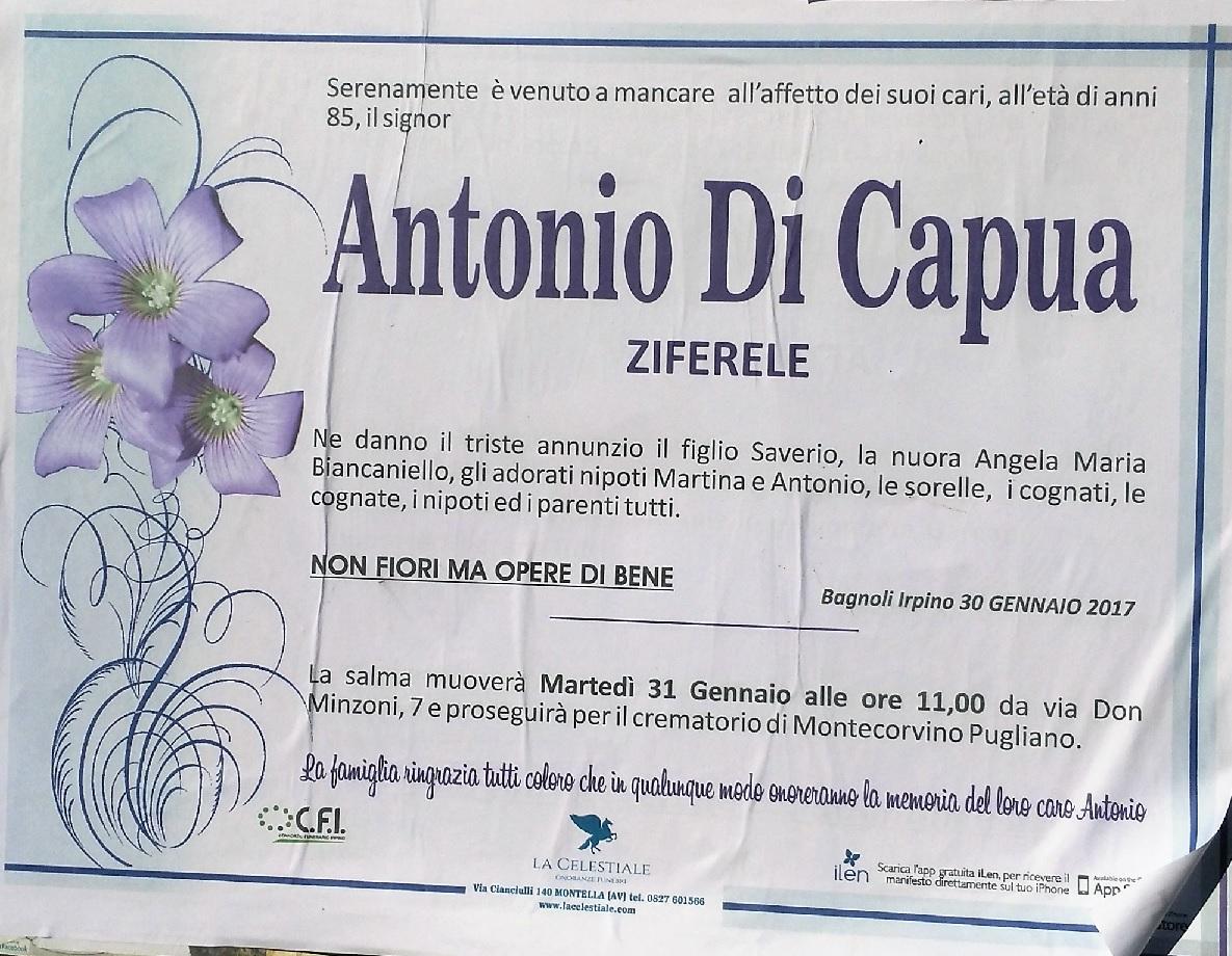 Antonio-Di-Capua-Ziferele