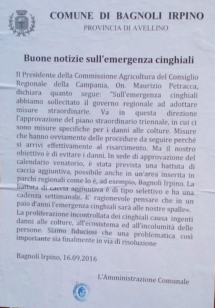 bagnoli-amministrazione-comunale-comunicato-cinghiali-settembre2016