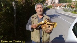 bagnoli-silvio-santoriello-trova-porcino-gigante-1-700-kg