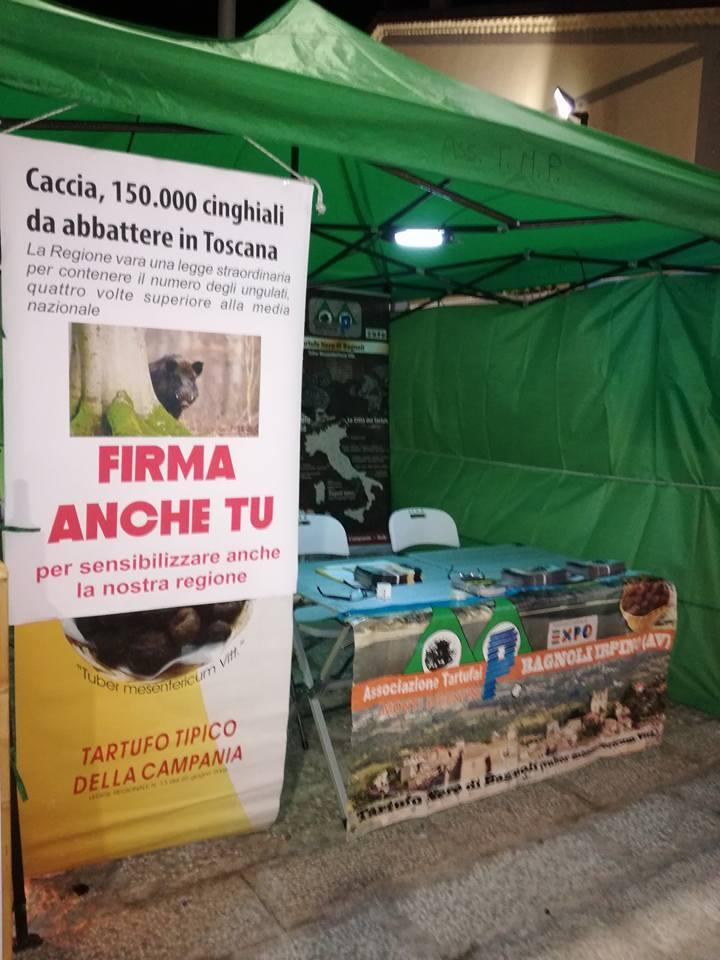 Bagnoli-Sagra-2017-raccolta-firme-abbattimento-cinghiali