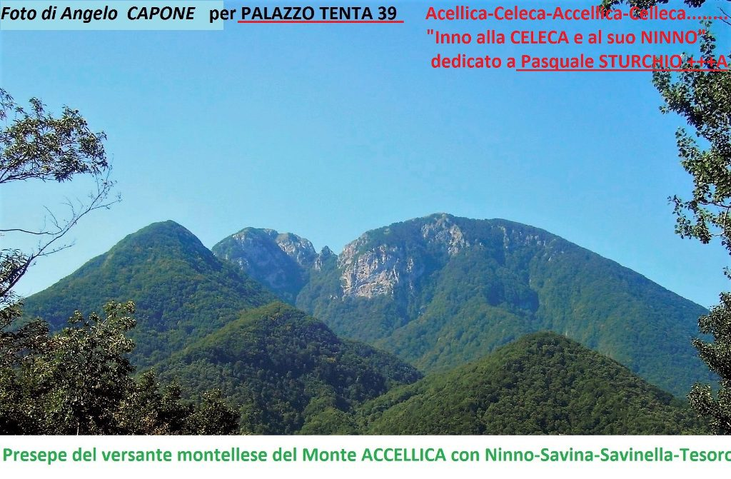 Foto-Accellica-di-Angelo-Capone