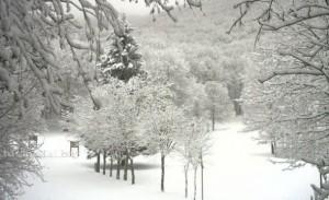 Innamorati-della-neve-Febbraio-2015