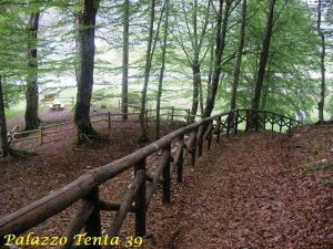 Laceno-bike-park-pista-Santa-Nesta-