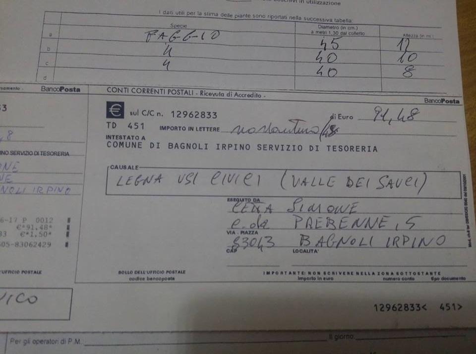 Laceno-tagli-abusivi-legna-giugno-2017-pagamento-bollttino-postale