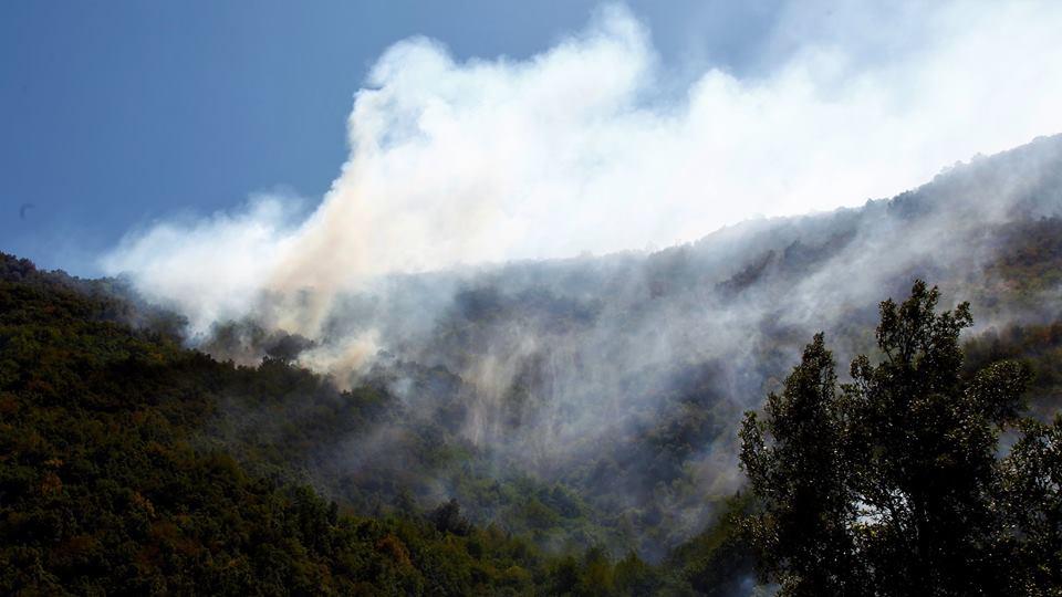 Montella-incendi-4