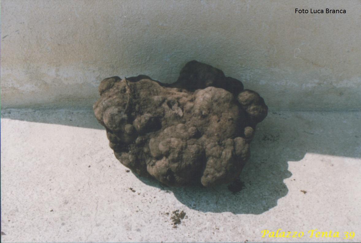 Pietra-Fungaia -anni-90-Falde-Monte-Cervialto-1
