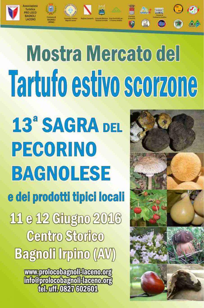 bagnoli-irpino-locandina-mostra-scorzone-estivo-13-sagra-ricotta