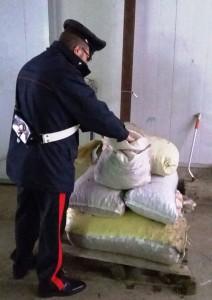 carabinieri-castagne-rubate-2