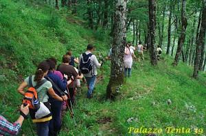 escursione-guidata-lago-laceno