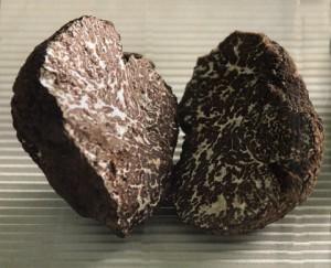 tartufo-nero-bagnoli-480x388