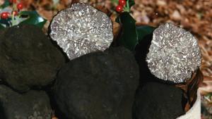 tartufo-nero-di-bagnoli-irpino